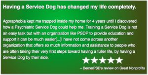 5 star review: Having a service dog has changed my life completely…