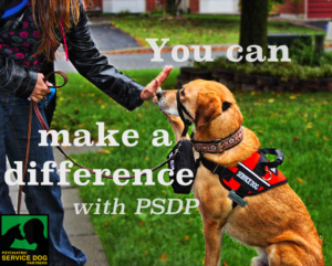 Help Psychiatric Service Dog Partners raise money!